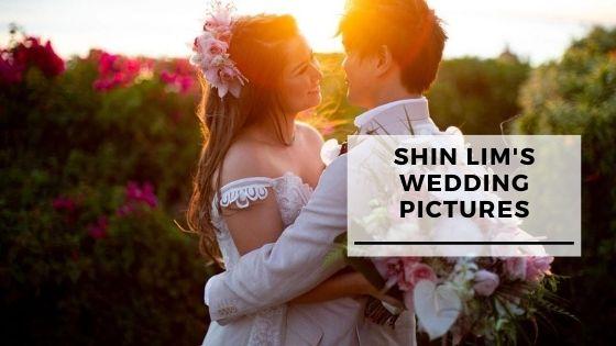 Best 13 Pics Of Shin Lim's Wedding In Hawaii